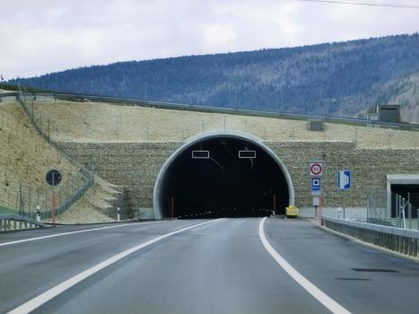 Tunnel de Malleray