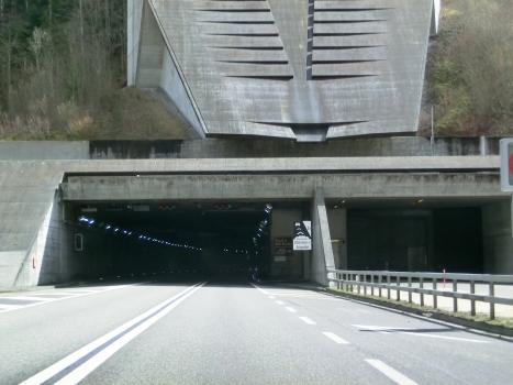 Tunnel du Mont Russelin