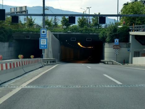 Tunnel Bachet-de-Pesay
