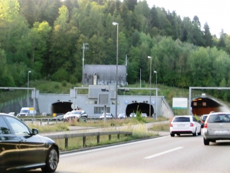 Bareggtunnel