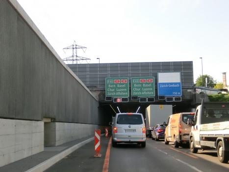Stelzen Tunnel eastern portal