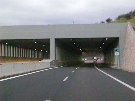 Tunnel Bollone III