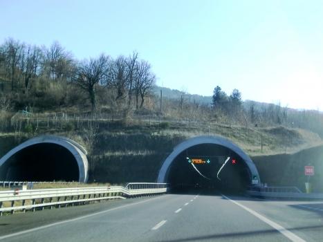 Grizzana Tunnel northern portals
