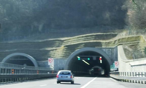 Poggio Civitella Tunnel northern portals