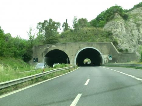 Tunnel de Cologna