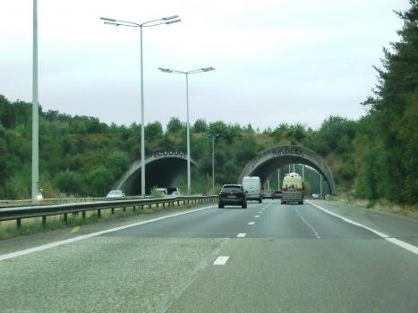 Grünbrücke Kikbeek