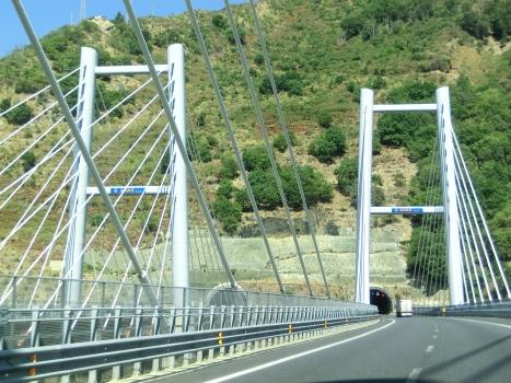 Viadotto sul Favazzina