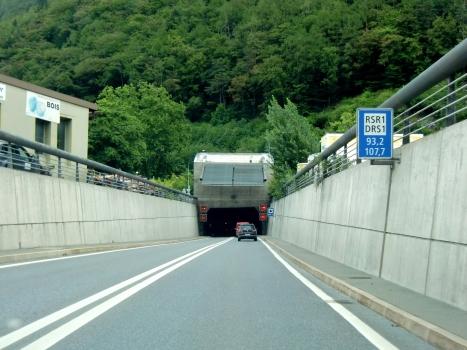 Mont Chemin Tunnel western portal
