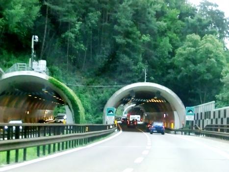 Tunnel de Gardena-Groden