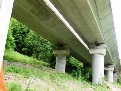 Viaduc de Del Casello