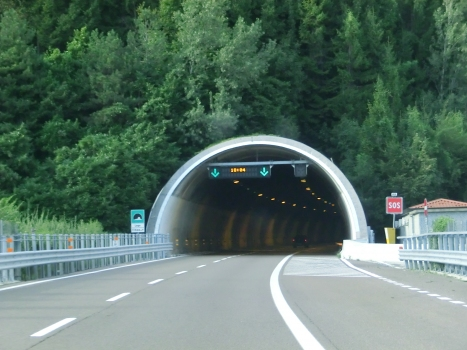 Tunnel de Lago