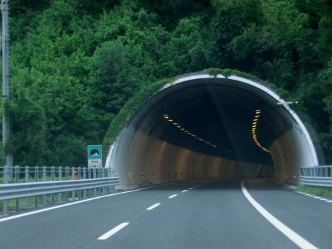 Mena Tunnel southern portal