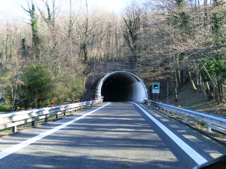 Tunnel Carpugnino