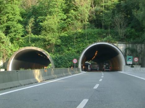 Tunnel Selva Spessa