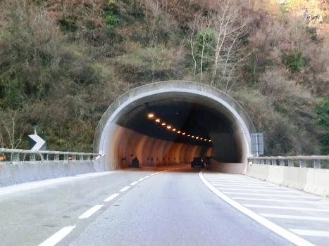 Tunnel de Stresa 2