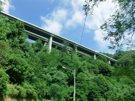 Talbrücke Tianin