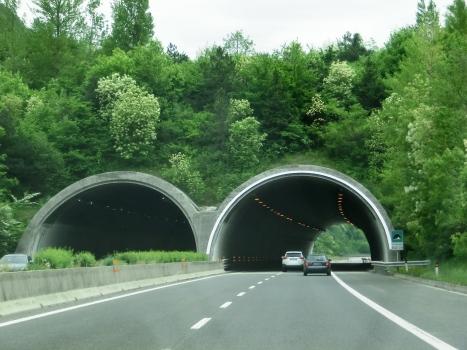 Tunnel de San Floriano
