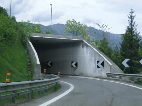Tunnel de Cadola 1