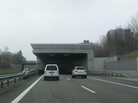 Strengelbach Tunnel southern portal