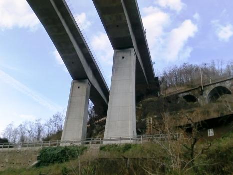 Biaschina Viaduct