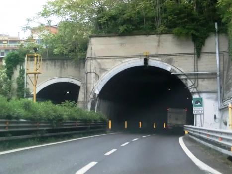 Seminario Tunnel eastern portals