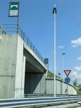 Santa Margherita-Brücke (I)