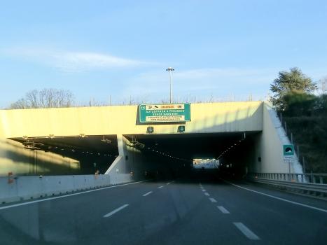 Tunnel Venegoni