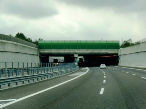 Caltana Tunnel eastern portals