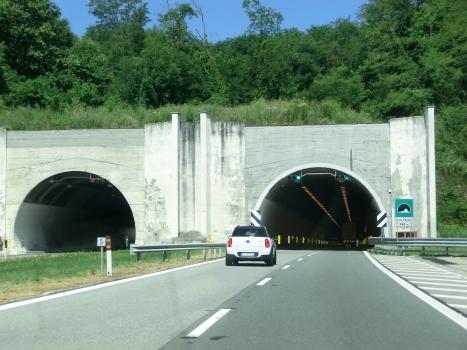 Passo d'Avenco Tunnel southern portals