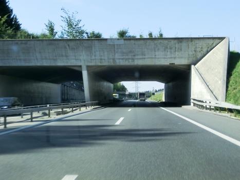 Tunnel d'Isenberg