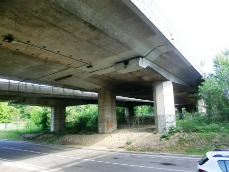 Parchi Viaduct