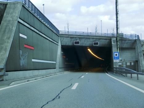 Tunnel de Birchi
