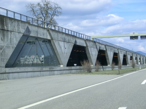 Tunnel Birchi