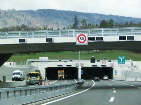 Tunnel du Büttenberg