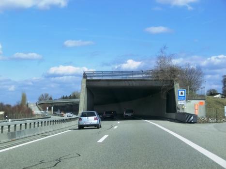 Tunnel de Leuzigen