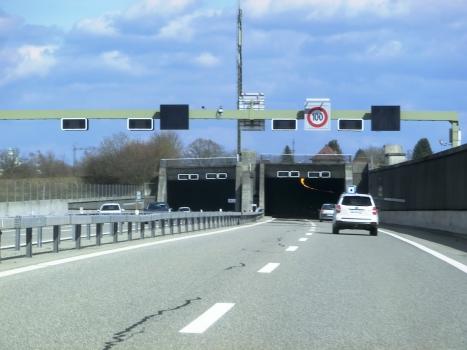 Lusslingen-Tunnel