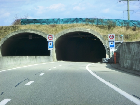 Tunnel de Pieterlen