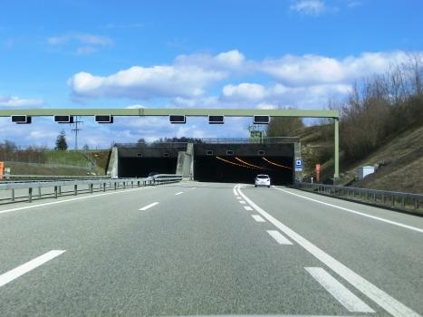 Tunnel de Spitalhof