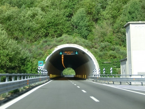 Tunnel Biestro