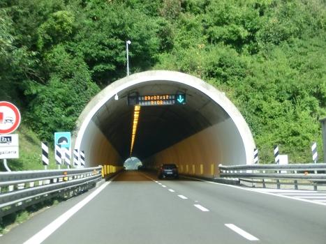 Tunnel Bogile
