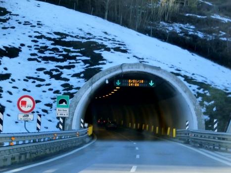 Bric Tana Tunnel southern portal
