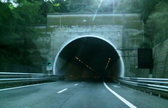 Tunnel Cadibona