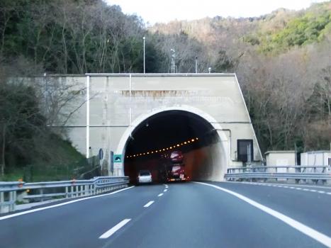 Tunnel Passeggi II