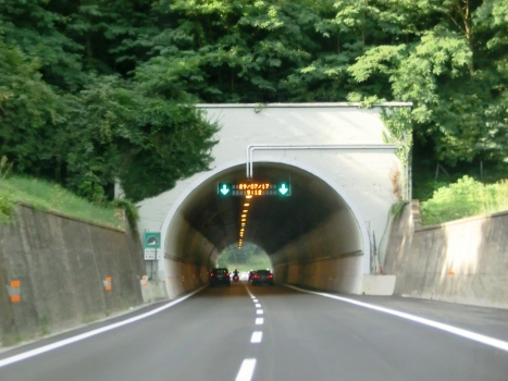 Tunnel De Matteis