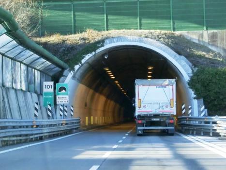Giannoli Tunnel southern portal
