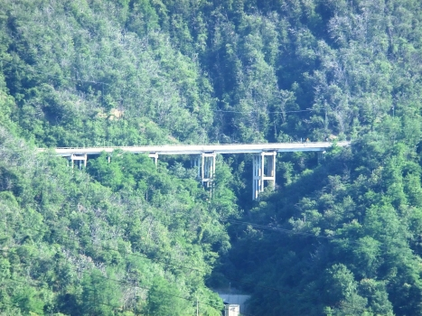 Gogole Viaduct