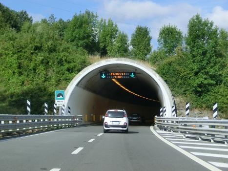 Tunnel Maloni