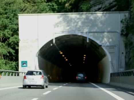 Tunnel Pione
