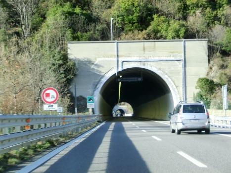 Tunnel Ricchini