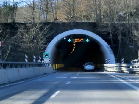 Tunnel Ronchi